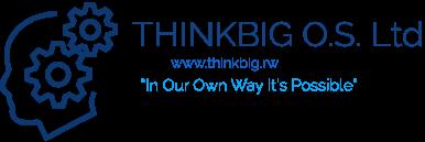 THINKBIG O.S. Ltd